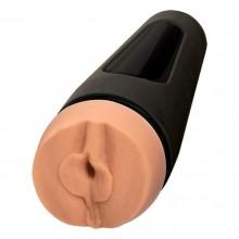 Sexpert Erotic Game Tease &...